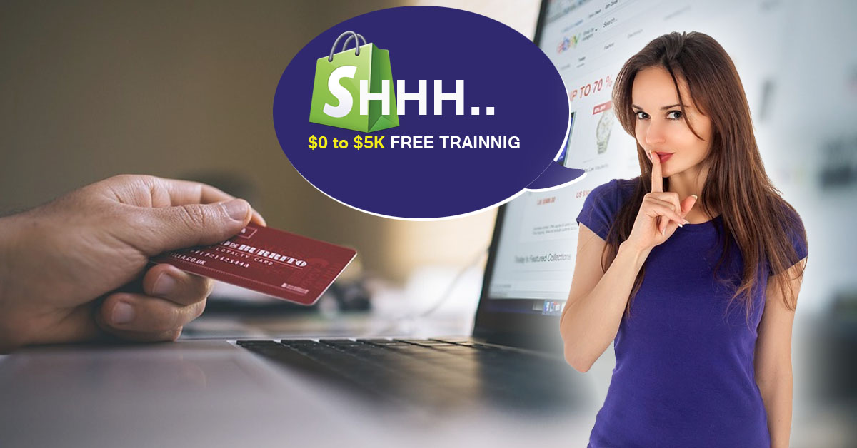 $0 To $5,000 on shopify Mini training